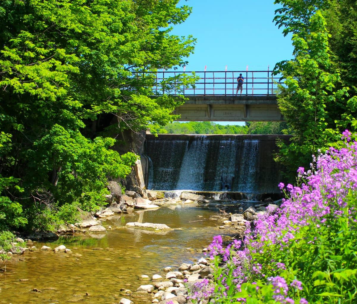 Grey County Waterfalls Holstein Dam Ontario