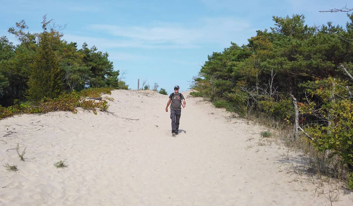Man walking on sand dune path between trees