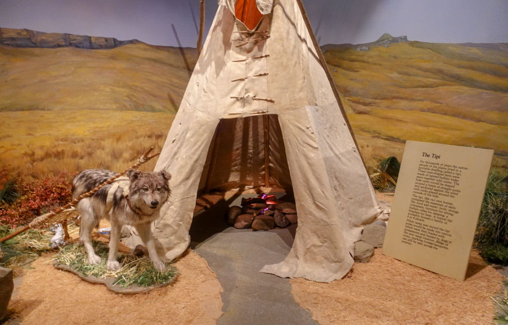 Display of dog beside tipi Head-Smashed-In Buffalo Jump