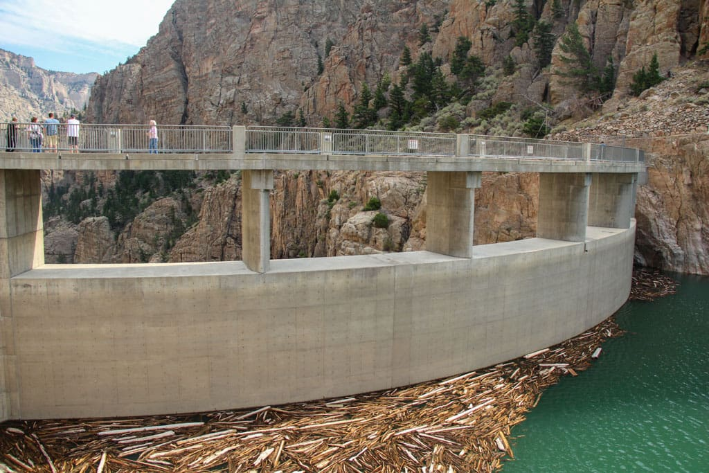 Buffalo Bill Dam wood collecting on water at base