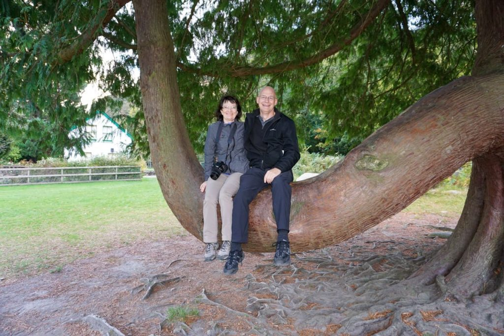 Couple sitting on U-shaped tree limb