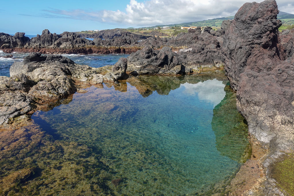 Shallow natural seaside pools Piscina Lajinha Faial
